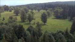 Wildes Bayern - Geburt eines Urwaldes (1 von 3)