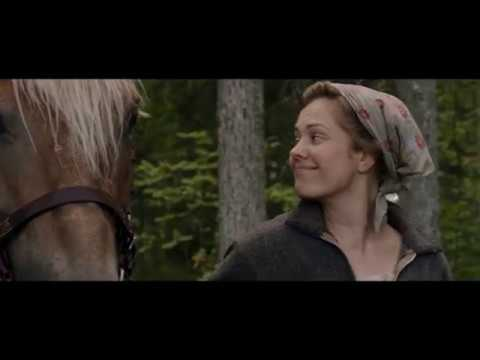 OMA MAA Hevonen vetämään