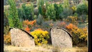 Yaşar Taner Anatolian Quartet Gesi bağları