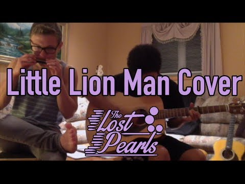 Little Lion Man Cover
