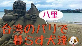 台湾犬豆豆にはお留守番をお願いして… 台湾のバリ(八里)に行ってみま...