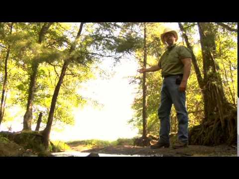 White Oak Pastures, CUD