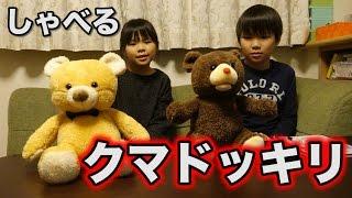 ンダホの妹と弟にしゃべるクマドッキリ!!!