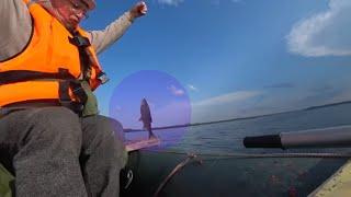 Моя первая летняя рыбалка в этом сезоне Плотва на глубине 8 метров