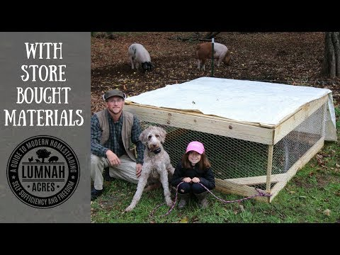 DIY $30 Chicken Coop you can Build in 30 minutes