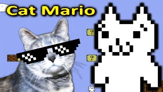 THIS GAME TOOK AWAY ONE OF MY NINE LIVES!! | Cat Plays Cat Mario!