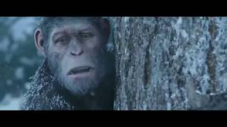 War For The Planet Of The Apes  l2017l The Best Scenes HD [Edited]