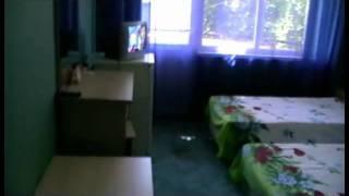 Отдых в Лоо (Сочи) Гостевой дом «Альмира