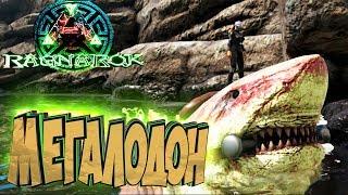 ПРИРУЧАЕМ МЕГАЛОДОНА - ARK Survival Evolved Выживание на Ragnarok #11