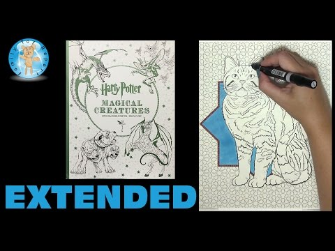 harry-potter-magical-creatures-coloring-book-speed-color-extended---family-toy-report