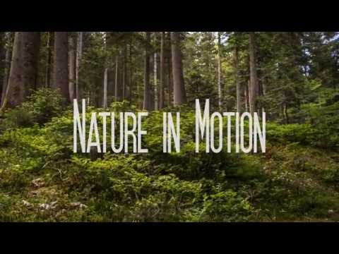 Nature in Motion [4K Ultra HD]