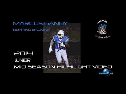 Gandy 2014 Mid Season