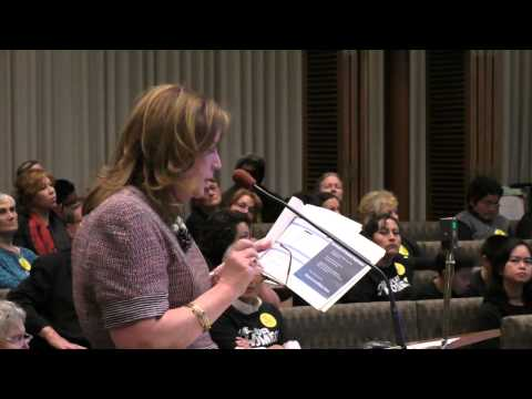 Buena Vista Mobile Home Park Hearing Day One - Jisser Attorney