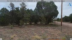 Priced at $43,000 - 2145 Graphite Road, Clay Springs, AZ 85923