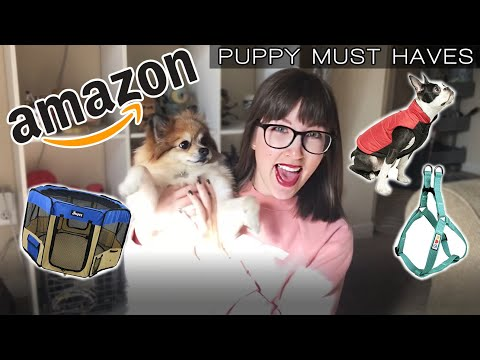 AMAZON PUPPY FAVORITES & MUST HAVES