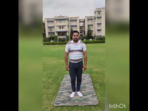 surya namaskar and stretching yoga poses  youtube