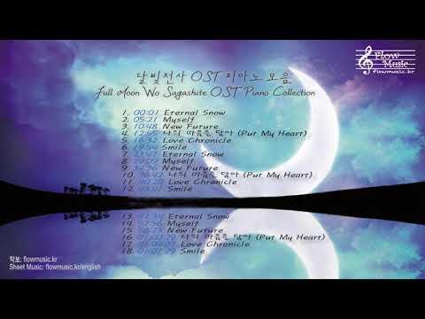 공부할 때 듣는 달빛천사 OST 피아노 모음 (Full Moon Wo Sagashite OST Piano Collection For Studying)