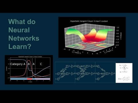 What do neural networks learn?