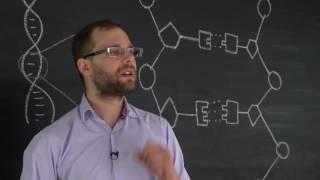 Строение ДНК. Естествознание 4.2