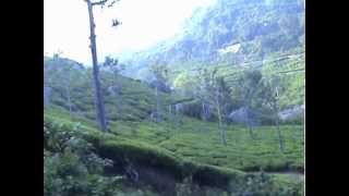 OOTY - the hill station of the Nilgiri mountains - Heritage Mountain Train