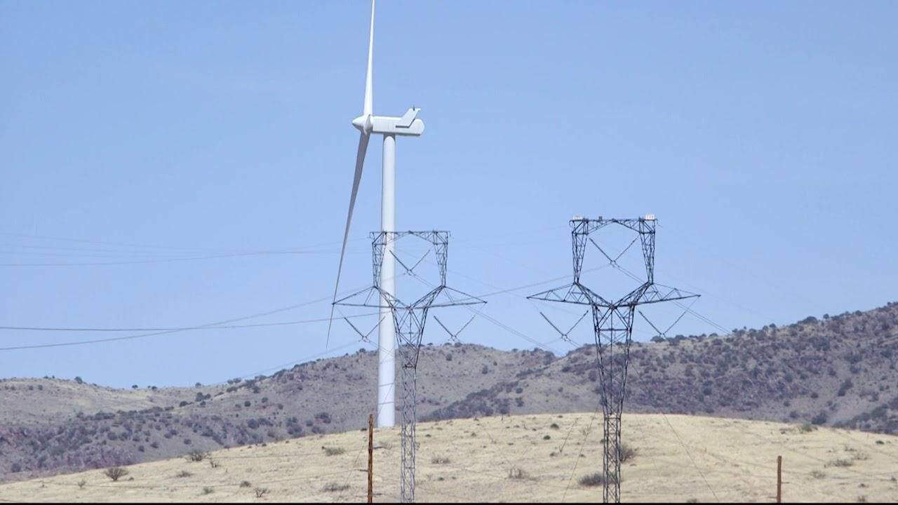 Arizona wind farm investigated after death of bat, eagle