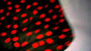 Модная женская черная рубашка с отложным воротником и длинным рукавами《Красные губы》Топы 2111