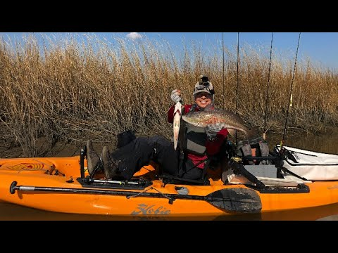 Locate Oyster That Holds Fish / Cold Water Kayak Fishing In The Marsh