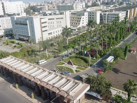 FACULTY OF NURSING, MANSOURA UNIVERSITY EGYPT, INTERNATIONAL STUDENTS GRADUATION ACTIVITIES.