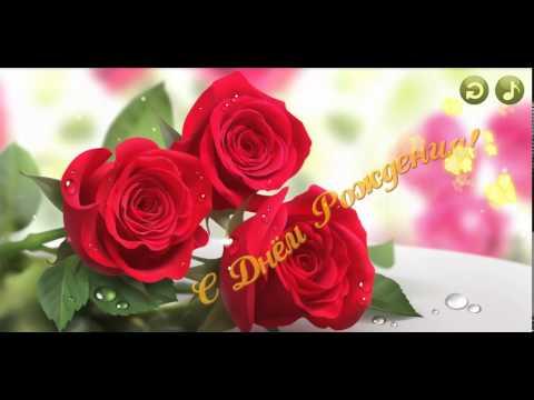 С Днем Рождения! Поздравления с Днем Рождения! В подарок белые розы
