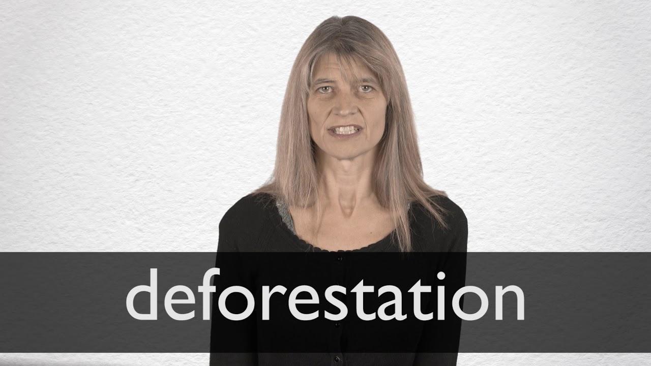 """Deutsche Übersetzung von """"deforestation""""  Collins Englisch"""