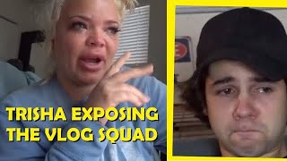 A 2 MINUTE version of 'DAVID DOBRIK IS A HORRIBLE HUMAN BEING' by TRISHA PAYTAS deleted video