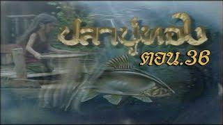 ปลาบู่ทอง ตอน 36