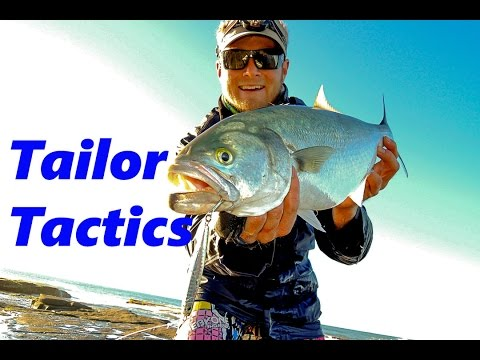 Tailor Fishing Tutorial