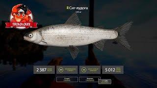 Русская рыбалка 4 Сиг  оз Ладожское