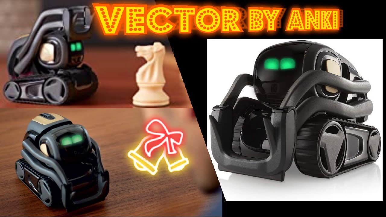 Vector Robot by Anki   A Home Robot Who Hangs Out & Helps Out   With Amazon  Alexa Built In