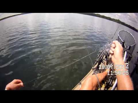 2017 07 19, Fishing Wildcat Lake