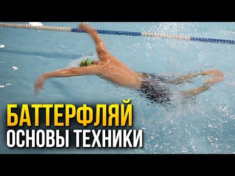 Как научиться плавать баттерфляем. Самое важное в технике