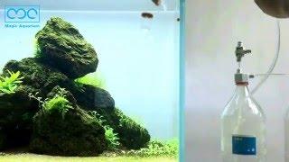 MC二氧化碳发生器操作视频