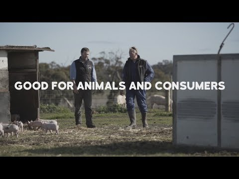 RSPCA Approved Good Food Series: Good for animals and consumers
