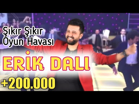 MEVLÜT TAŞPINAR - 2018 - ERİK DALI -   /Süper Oyun Havası  (Special Moving Music for Wedding)