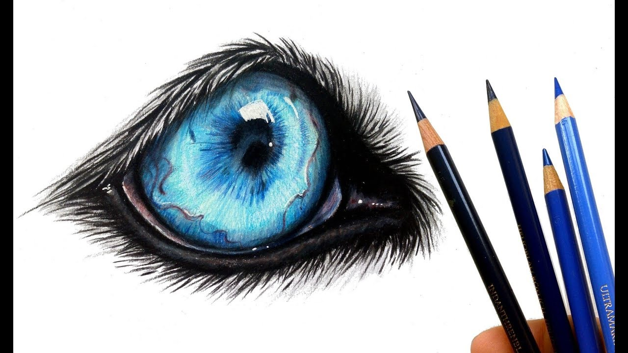 Let's draw a wolf eye! | Colored pencil - YouTube