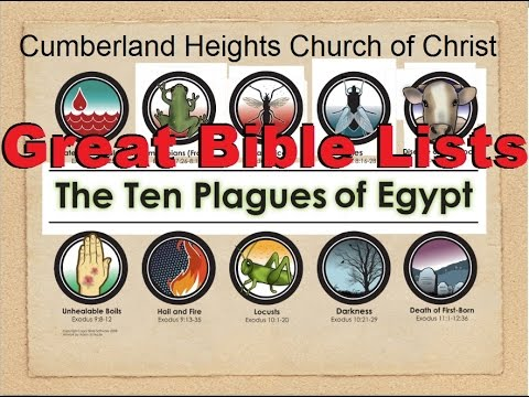 a report on the ten plagues of egypt The ten plagues by nissan mindel published and copyrighted by kehot publication society  first, the waters of the land of egypt were to be turned into blood .