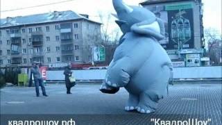 """Надувной костюм """"Слон"""" для промо-акций от """"КвадроШоу"""""""