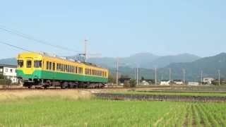 富山地鉄10030形10041F 若栗~栃屋通過