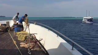 Maldives. Мальдивы. Острова. Поверхность.(Maldives. Мальдивы. Острова. Поверхность. Перезалил видео. Первая попытка не получилась. Не на всех мобильных..., 2016-05-13T18:48:48.000Z)