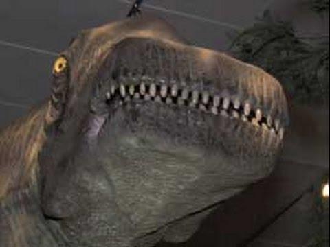 Gigantic New Dinosaur Species Uncovered in Australia | Doovi