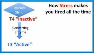 STRESS AND FATIGUE | Tired all the time