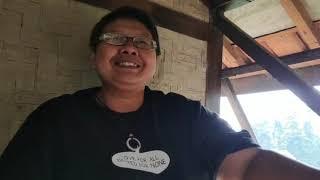 Berkunjung ke kebun Mba Pinah (Sang Petualang)