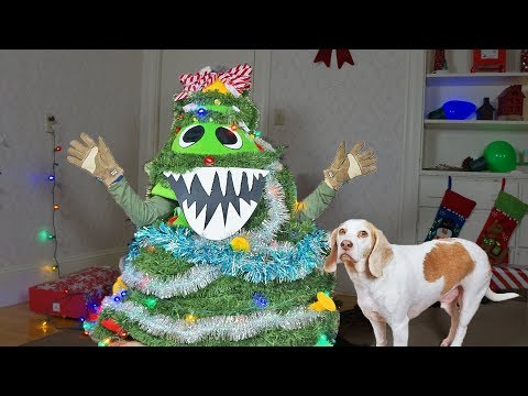 Christmas Tree Monster Pranks Dogs! Funny Dogs Maymo & Potpie