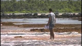 69 - Одиссея Жака Кусто - Маркизские острова
